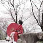 艶漢 吉原詩郎 桜 model:瑠花